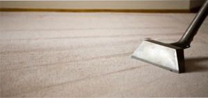 Carpet Cleaning Bexley